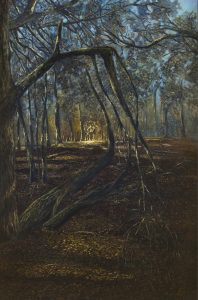 A Forrest